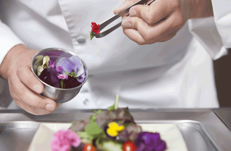 Edible flowers and how to taste them. Do you dare?